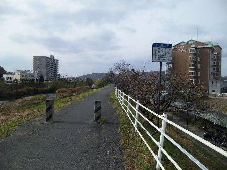 ファイル 20101128_saijyouinari1-2.jpg