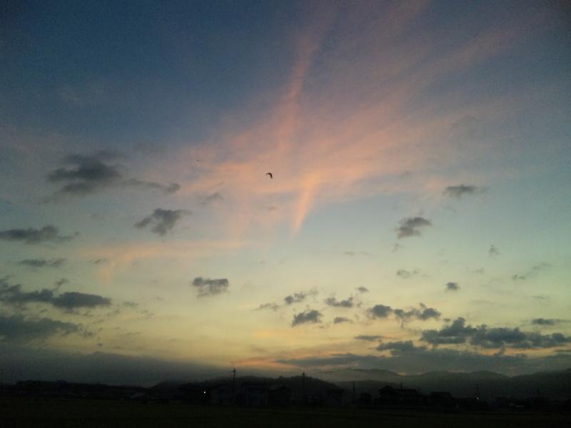 ファイル 20110813_sky-at-dawn-3.jpg