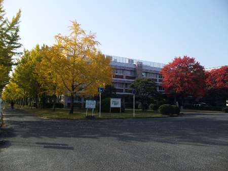 ファイル autumnal_leaf-3.jpg