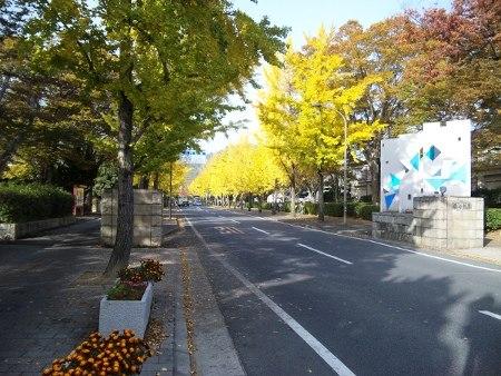 ファイル autumnal_leaf.jpg