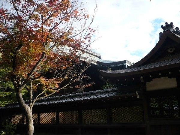 ファイル imahie_toyokuni-4.jpg